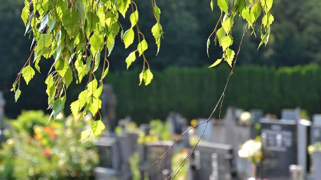 probates-deceased-estates-legal-advice-family-law-warrnambool-melbourne